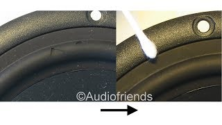 Repair the rubber surrounds of your speakers - cats and dogs...
