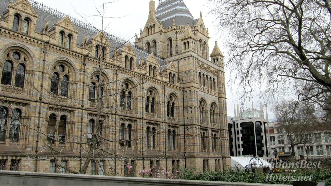 Hotels Near Museum Of Natural History London