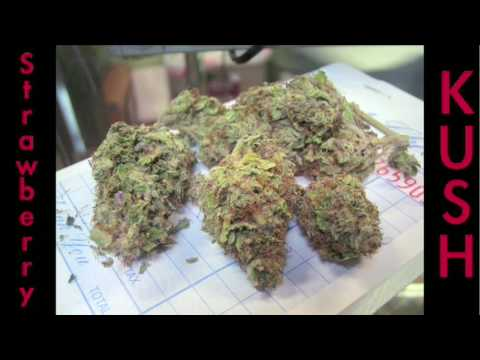 STRAWBERRY KUSH !!! The WEED Report : Episode #23