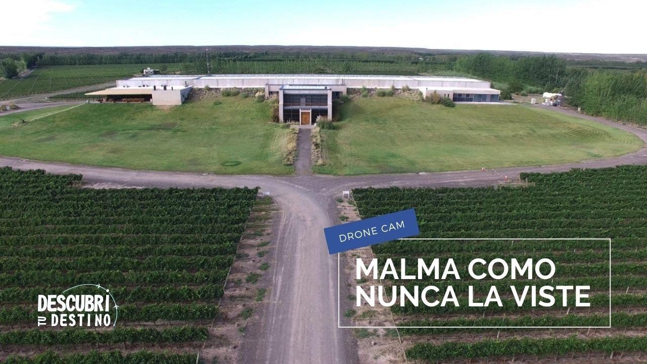 Bodega Malma, un paraíso de viñedos | San Patricio del Chañar | Neuquén