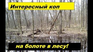 коп 2019 Интересный коп на болоте в лесу Сюрприз с войны