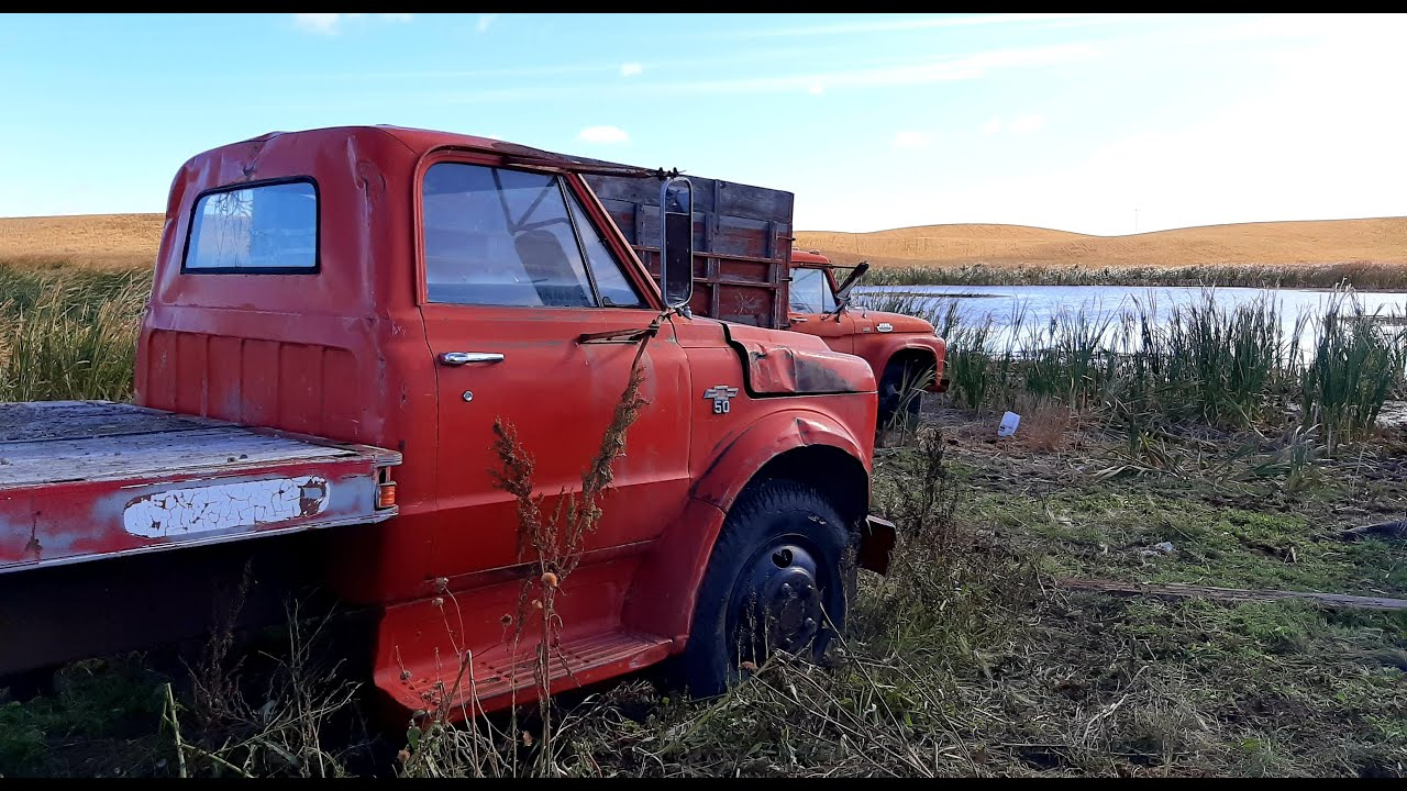 Download Will This Retired 1969 Chevrolet C50 Truck RUN AND DRIVE?