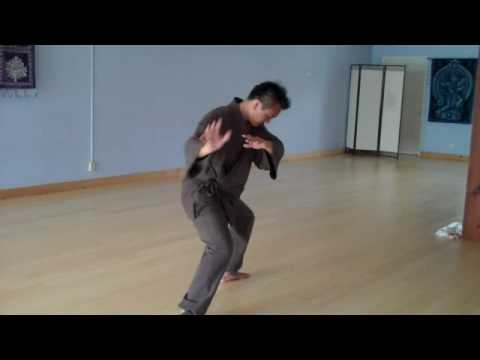 Tai Chi - Chen Style 18 Step Short Form - YouTube