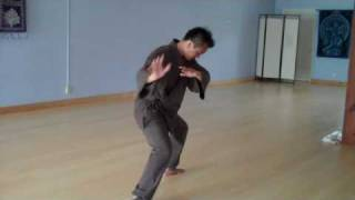 Tai Chi - Chen Style 18 Step Short Form