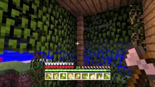 #17 Minecraft - Стеклянная крыша :)(, 2015-06-11T14:48:56.000Z)