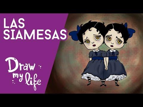 TRÁGICOS CASOS de SIAMESAS - Draw My Life