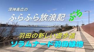 ふらふら放浪記プチ(ソラムナード羽田緑地)in2020年1月1日