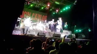 Don Carlos - Satta massagana- groove 2014 - Argentina