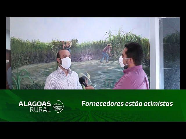 Fornecedores estão otimistas com a nova safra de cana-de-açúcar em Alagoas