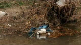 Clean Bayou - Contraband Bayou
