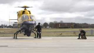 Psni Dog Section & Air Support Unit Training For #g8