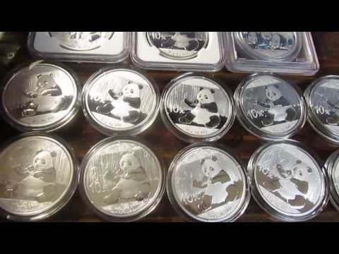 Silver Panda Collection + High Premium Silver Discussion