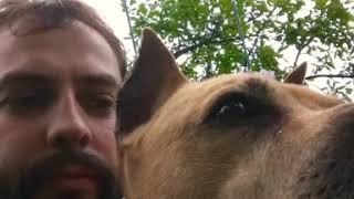 Я и моя собака.