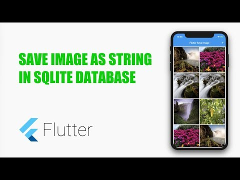 Google's Flutter Tutorial - Save Image As String In SQLite. (coderzheaven.com)