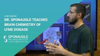 Dr. Sponaugle teaches the brain chemistry of Lyme disease