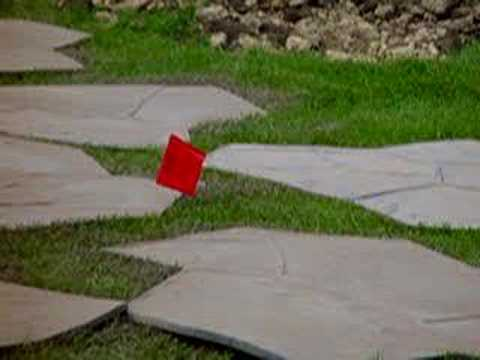 815-600-6464,Decorative Stamped Concrete Contractors,Chicago,Illinois,Chicagoland,