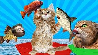КОТЕНОК РЫБОЛОВ симулятор кошачьей рыбалки видео про маленького котенка как мультик игра GAMES FACTO
