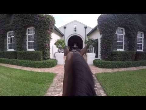 A day in the life of a horse rider | Wellington, FL | E2 Stables