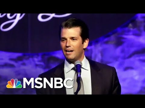 Are Donald Trump Jr. Russian Meeting Emails Evidence Of Criminality? | MTP Daily | MSNBC