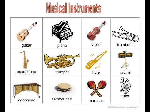 Learn Music instruments and sounds  KIDS