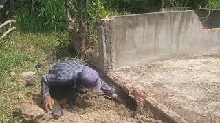 CHÓ SĂN BỊ RẮN HỔ MANG TẤ.N C.ÔNG LÚC 07 GIỜ TỐI MÙNG 3 TẾT (Hunting Dog Attacked By Cobra)