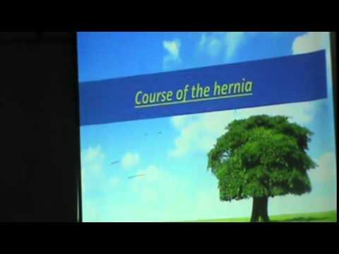 5) Dr.Shreif Zaki 17/02/2015 [ Hernia &Male external genitalia ]