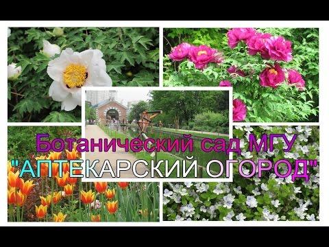 ЖК Life-Ботанический сад, г. Москва