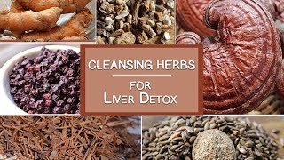 Cleansing Herbs for the Liver and More - Super Healing Herbs for Detoxification