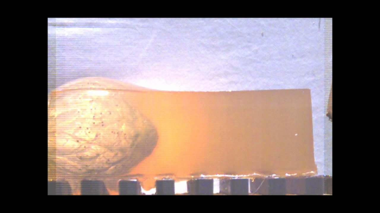 12 Gauge Shotgun Wax Slug Vs Ballistic Gelatin