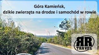 Góra Kamieńsk, dzikie zwierzęta na drodze i samochód w rowie
