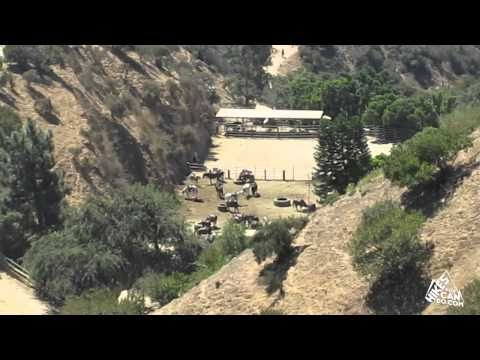 Los Angeles Hiking | Hike to Hollywood Sign | Griffith Park | Presented by Hikes You Can Do