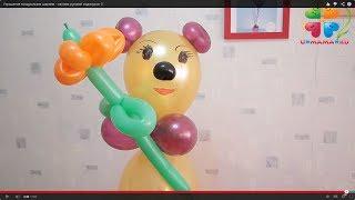 Украшение воздушными шарами - своими руками! видеоурок 3