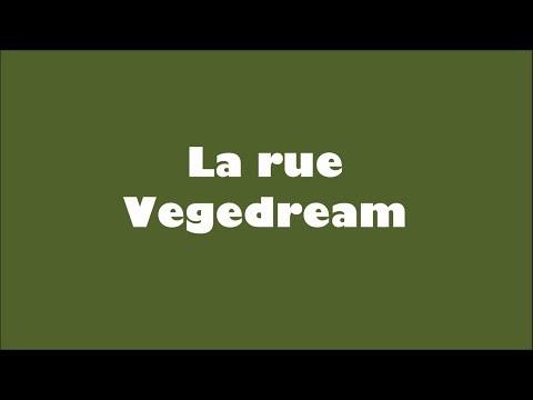 Vegedream - La rue ( Lyrics ) paroles