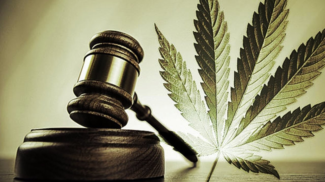 Cannabis Lawyer Tells All