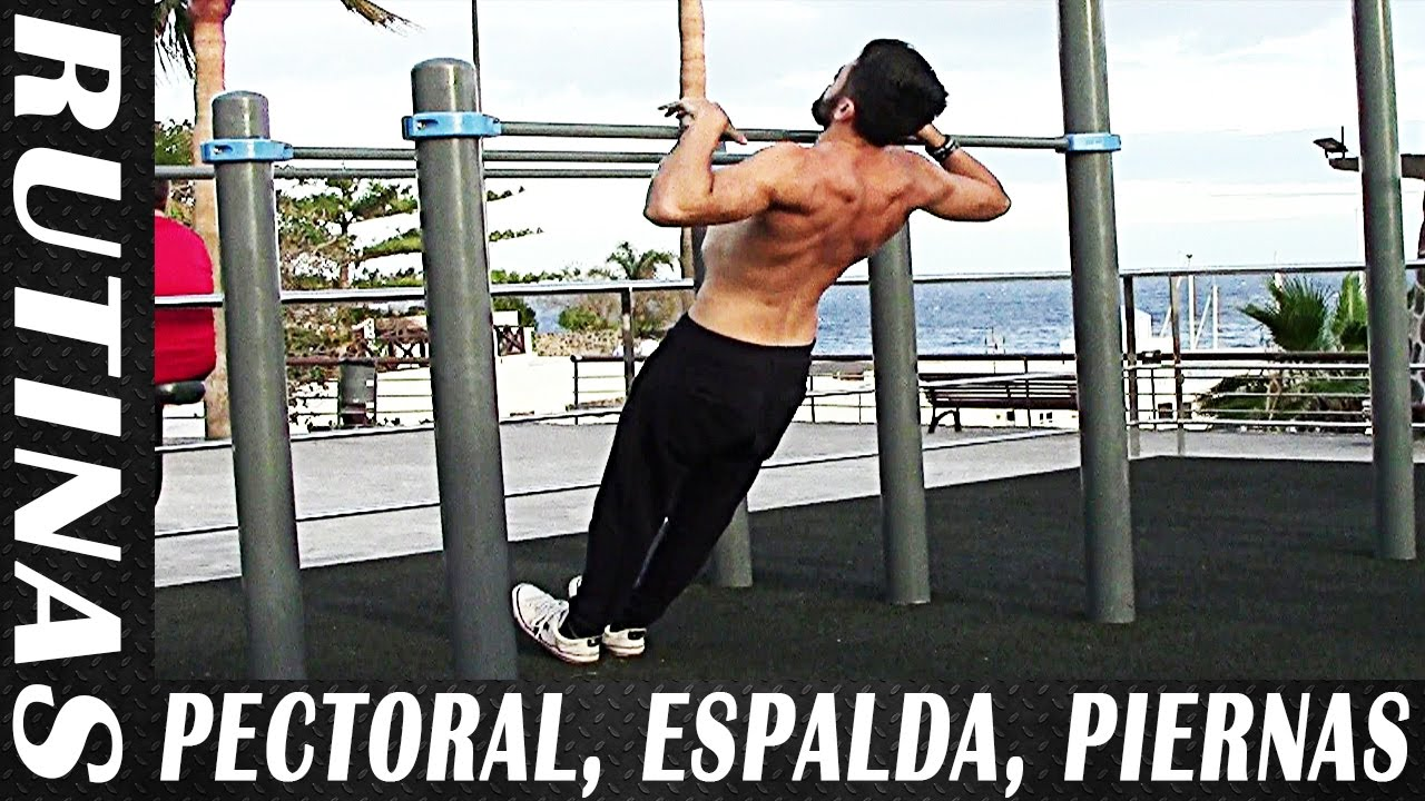 Ejercicios para pecho biceps y triceps
