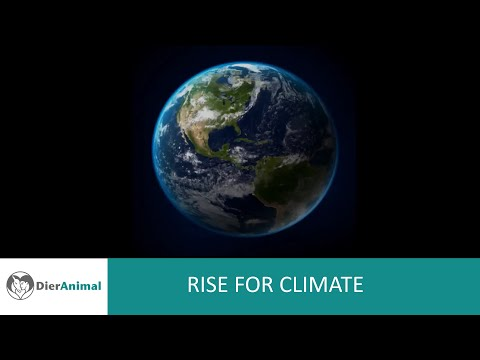 Rise for Climate NL sub