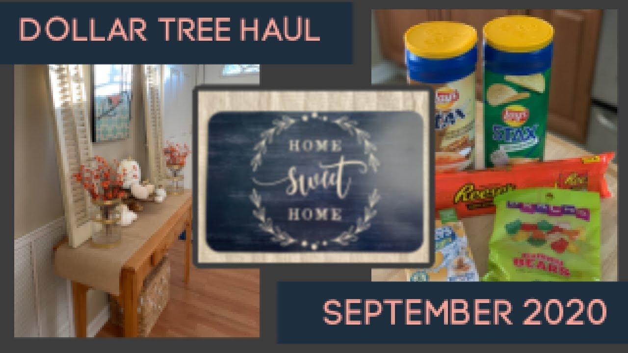 Dollar Tree Christmas Haul September 2020 Dollar Tree Haul | September 2020 | Fall Decor, Household and