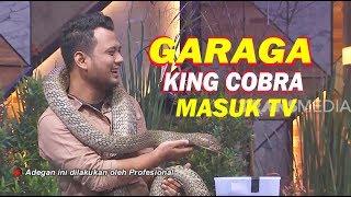GARAGA The King Cobra Masuk TV | INI BARU EMPAT MATA (19/12/19) Part 5