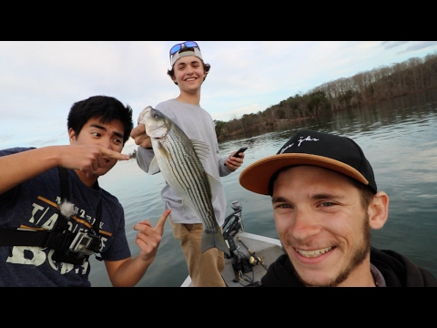 Almost Sunk The Boat Striper Fishing On Lake Anna With 1rod1reelfishing And Wyatt Minor!