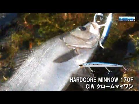 【楽天市場】へらぶな釣り専門店!特に初心者の方 …