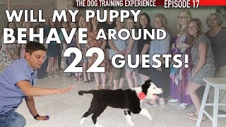 Training My Puppy To Listen Around 22 Guests!