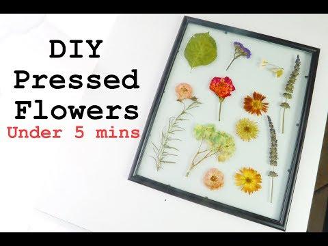 DIY PRESSED FLOWERS in UNDER 5 MINUTES