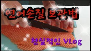 연어손질20201015 최종