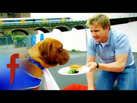 Gordon Ramsay's The F Word Season 2 Episode 2 | Extended Highlights 1