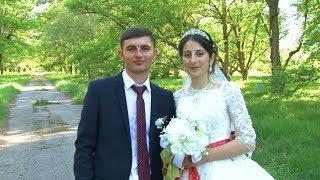 Веселый красивый Бар,Турецкая свадьба Аслан Замира 2017