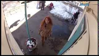 видео Видеонаблюдение в многоквартирном доме