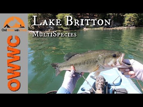 Smallmouth, Largemouth, Crappie Oh My!  Multi-Species Fishing At Lake Britton, CA