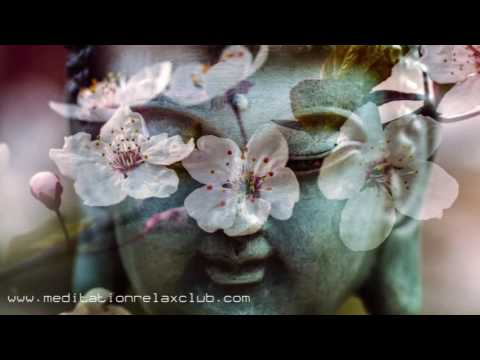 3 HOURS Zen Songs: Be in the Present Moment with Buddhist Meditation Music