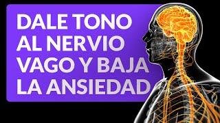 Ejercicios para darle tono al nervio vago y bajar la ansiedad