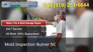 Mold Inspection Butner NC (919) 251-6644